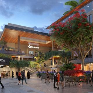 Coconut Grove's Real Estate Boom